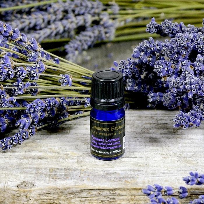 Organic Lavender Essential Oil - 5ml